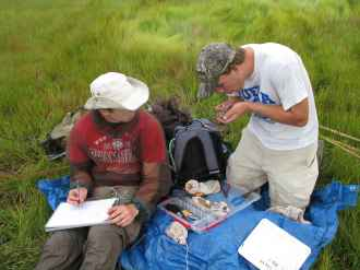 researchers-biologists-working-in-the-field